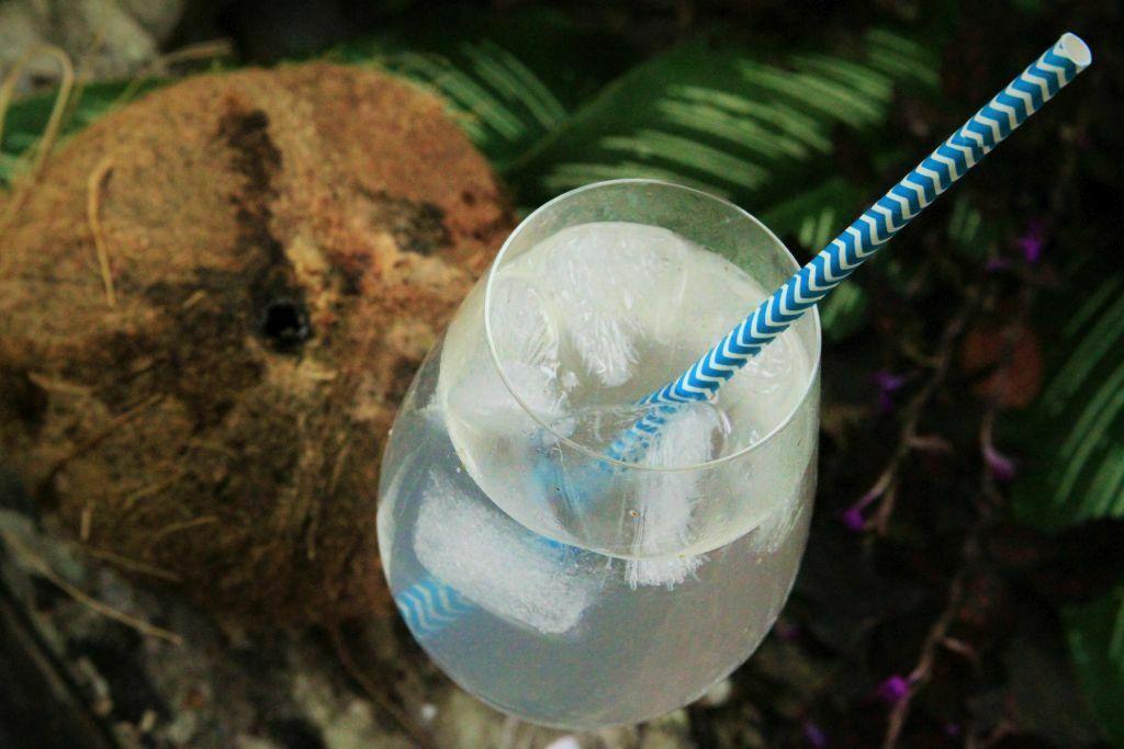 água de coco fresca com gelo - amor pela comida