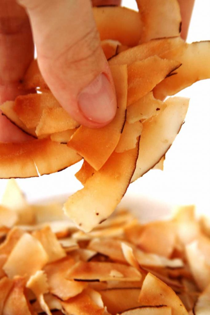 Receita de chips de coco doce e salgado, mega crocante, fininho e perfeito para comer de lanche. Receita Paleo Lowcarb
